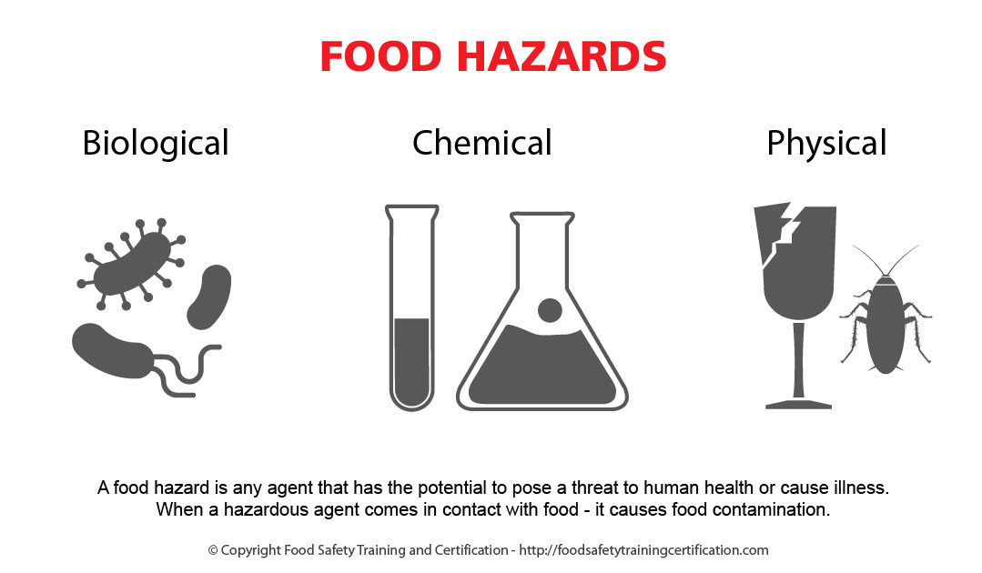food-hazards-food-safety-biological-chemical-physical